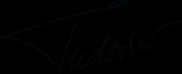 Marius Tudosiei Blog